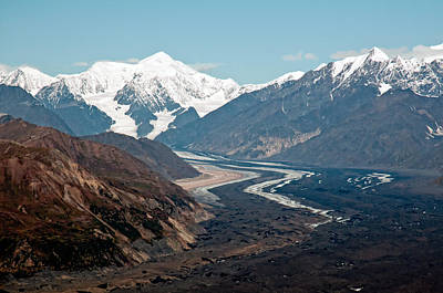 Art Print featuring the photograph Denali National Park by Gary Rose
