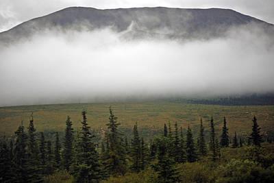Photograph - Denali Park - A Foggy Morning by Harvey Barrison