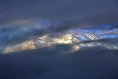 Photograph - Denali  by Rick Berk