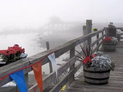 Photograph - Dense Fog by Janice Drew