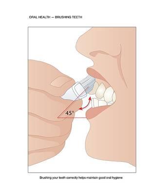 Dental Hygiene, Artwork Art Print by Peter Gardiner