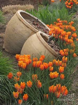 Denver Botanic Planters Art Print