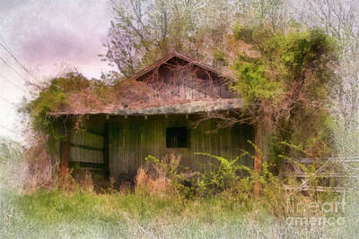 Abandoned Building Photograph - Derelict Shed by Susan Isakson