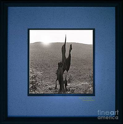 Photograph - Desert Art by James  Dierker