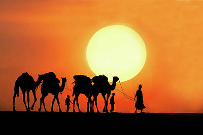 Rajasthan Photograph - Desert Camel Rides by Amateur photographer, still learning...