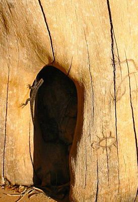 Photograph - Desert Hiroglyph by Sarah Gayle Carter