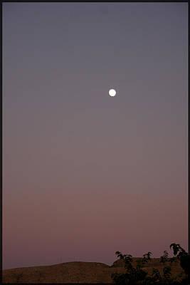 Desert Moon Art Print by Marta Alfred