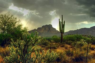 Photograph - Desert Sun Rays by Tam Ryan