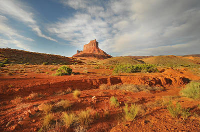 Y120831 Photograph - Desert by Tom Kelly Photo