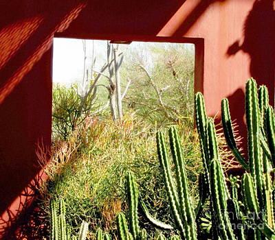 Marilyn Photograph - Desert Window by Marilyn Smith