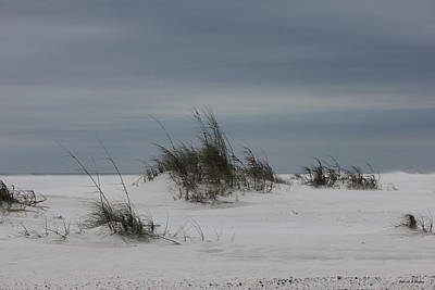 Photograph - Deserted Beach by Deborah Hughes