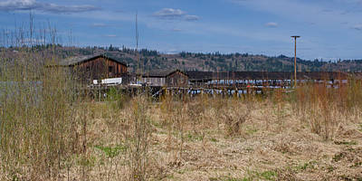 Photograph - Deserted Fish Buying Dock On The Columbia River by Ansel Price