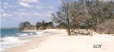 Photograph - Deserted Island by Lee Hartsell