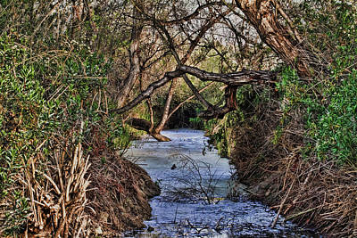 Desolation Creek Hdr Art Print by Paul Marto