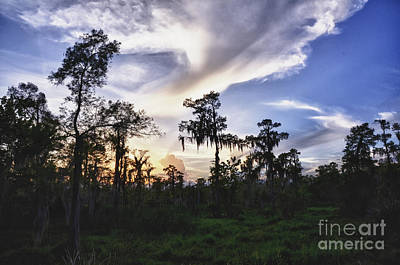 Destrehan Swamp Sunset Print by Jeanne  Woods