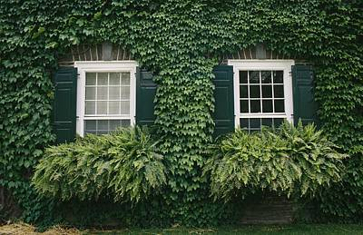 Cooperstown Photograph - Detail Of The Ivy-covered James by Raymond Gehman