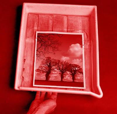Developing Photograph Art Print by Victor De Schwanberg