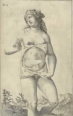 Development Of The Fetus. Female Figure Art Print by Everett