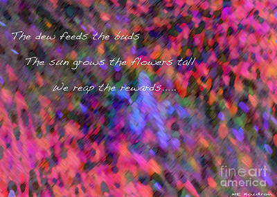 Digital Art - Dew Haiku by ME Kozdron