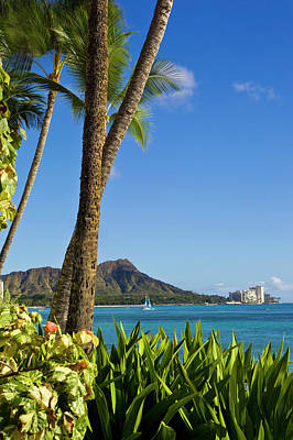 Photograph - Diamond Head Scenic by David Cornwell - Printscapes