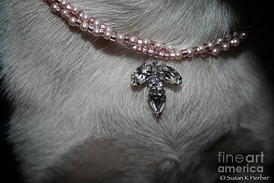 Canine Jewelry Photograph - Diamond Model by Susan Herber