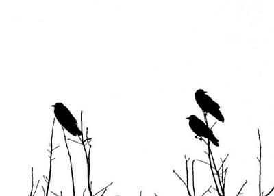 Did You Hear That Art Print by Tom McCarthy
