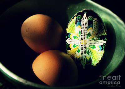 Photograph - Different Egg by Danuta Bennett