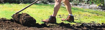 Photograph - Digging Up Dirt by Terri Thompson