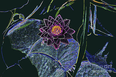 Photograph - Digital Lotus 2 by Bill Thomson