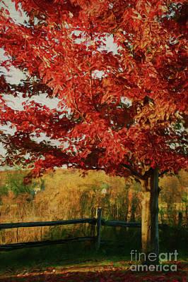 Digital Painting Maple Tree In Full Color Art Print by Sandra Cunningham