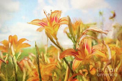 Flower Design Photograph - Digital Painting Of Orange Daylilies by Sandra Cunningham