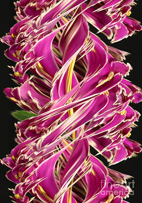 Designs In Nature Photograph - Digital Streak Image Of African Violets by Ted Kinsman