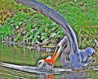 Blue Herron Photograph - Dinner On The Lake by Laurie Winn Adams