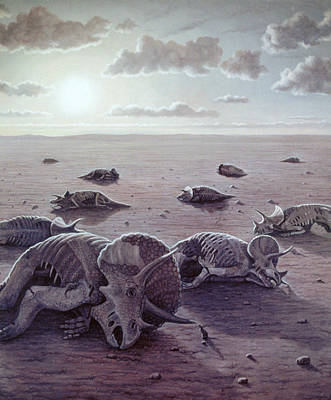 Wildlife Disasters Photograph - Dinosaur Extinction by Mauricio Anton