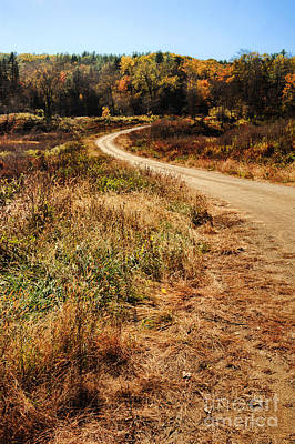Dirt Roads Photograph - Dirt Road by HD Connelly