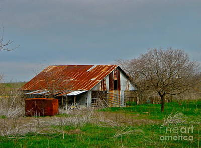 Art Print featuring the photograph Dirt Road Storage by Joe Finney