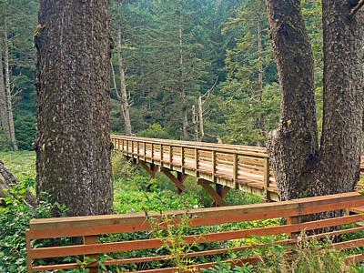 Discovery Trail Bridge Art Print by Pamela Patch