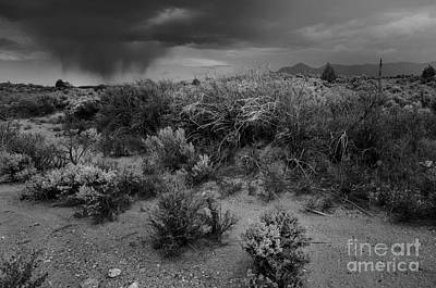 Photograph - Distant Shower by Ron Cline