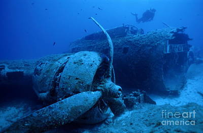 Undersea Photograph - Diver Exploring Sunken B17 Airplane Wreck by Sami Sarkis