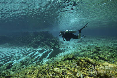 Diver Swims Through The Shallow Reef Art Print