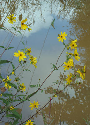 Blue And Brown Photograph - Divine Reflection by Jessica Brawley