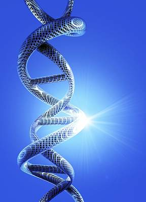 Dna Helical Structure, Artwork Art Print by Victor Habbick Visions