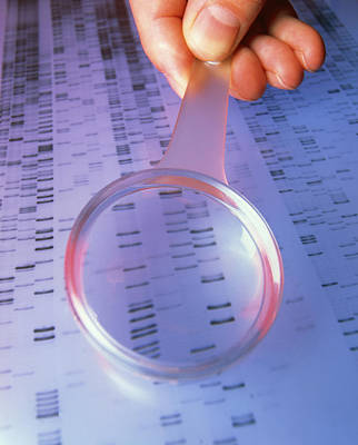 Dna Sequence Magnified By A Magnifying Glass Art Print