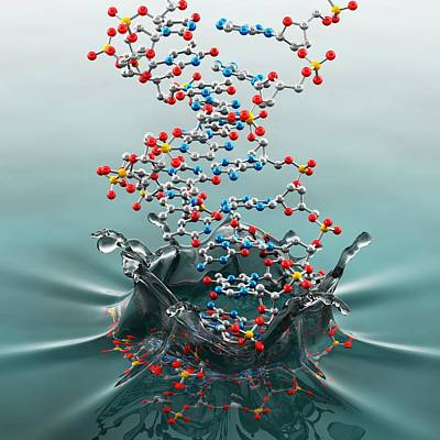 Dna Splashing Into Water, Artwork Art Print