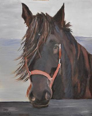 Dobbin The Horse Art Print by Barbara Bradbury
