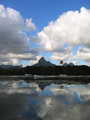 Briex Photograph - Dodo Land Mauritius by Nop Briex