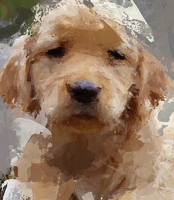 House Pet Digital Art - Dog 1 by Yury Malkov