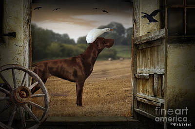Photograph - Dog And Duck by Ethiriel  Photography