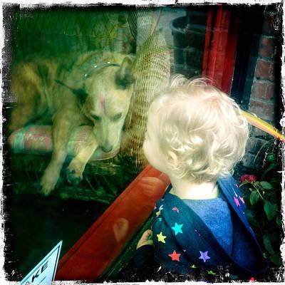 Dog In Window Art Print