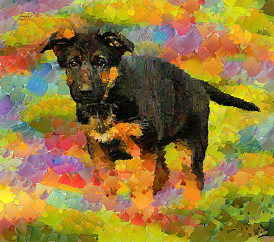 House Pet Digital Art - Dog Pet 2 by Yury Malkov